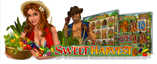 m.scr888 Sweet Harvest Slot Have Some Freshest Fruits and Vegetables