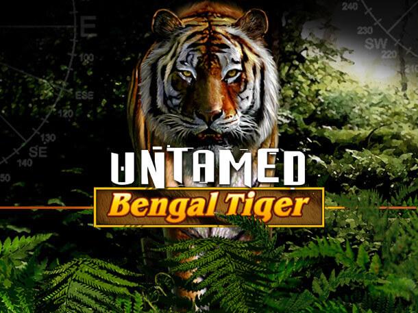 Play SCR888 Login Bengal Tiger Adventure Slot Game!2