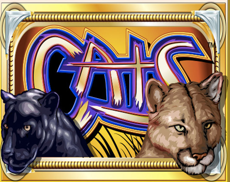 918Kiss(Scr888) Casino Online Slot Game free download - CATS