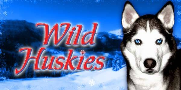 Casino SCR888 Online Slot game - Wild Huskies